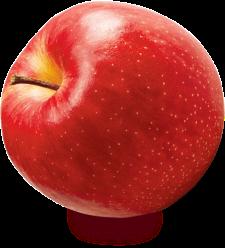 成増農園のりんご