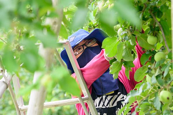 成増農園 女性社員